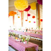 red and white checkered tablecloth party decor