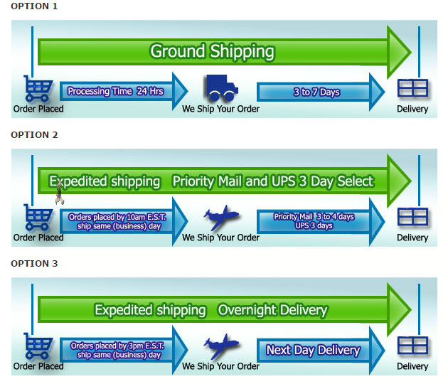 Shipping infographic premier